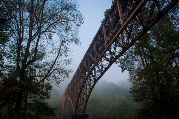 bridge_blueheron